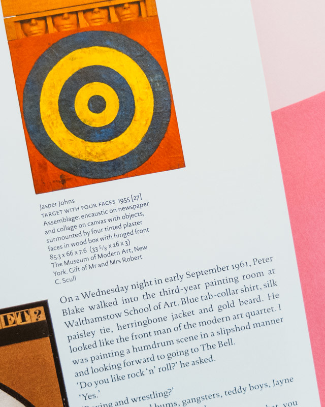 jasper johns - peter blake book review