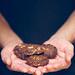 galletas de chocolate y almendra