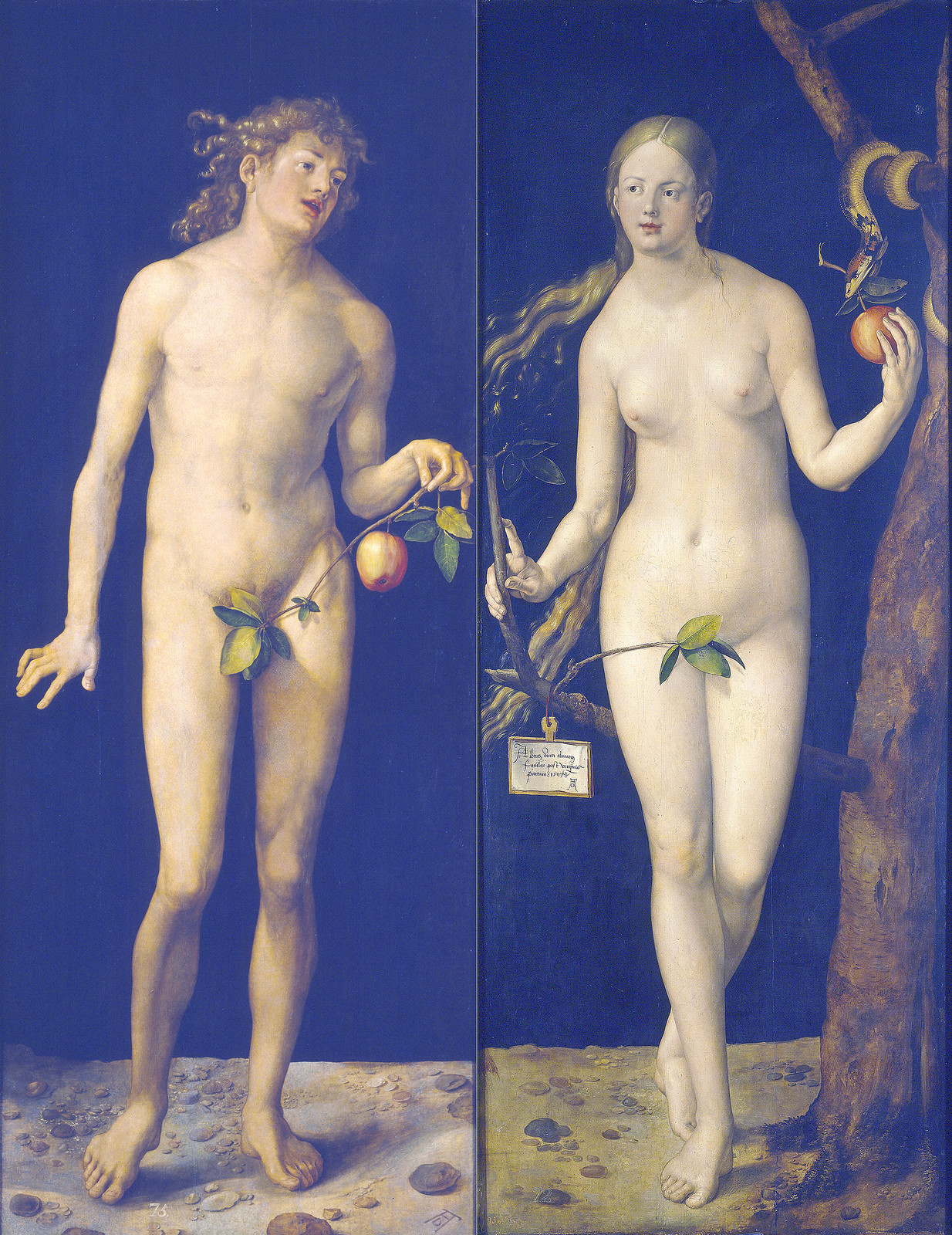 Albrecht Durer Adam And Eve 1507 d Rer Adam Amp Eve 1507