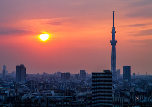 Sunset Sky Tree | by arcreyes [-ratamahatta-]