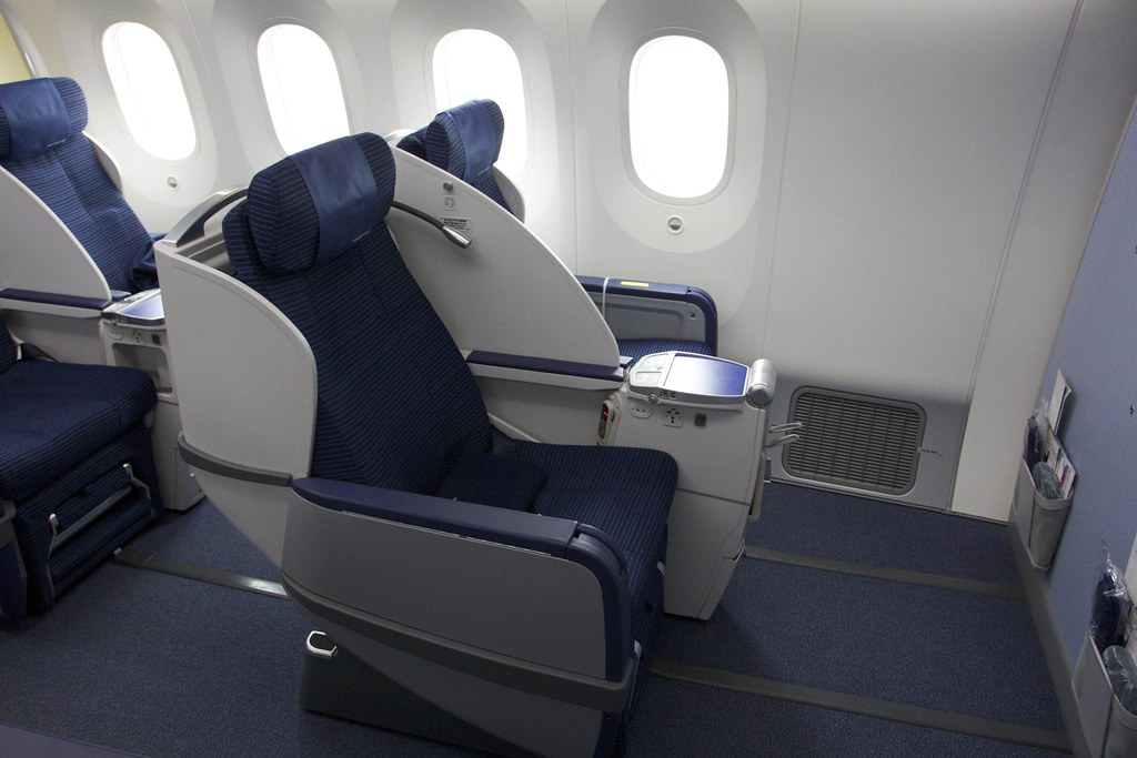 787 8 Dreamliner Business Class Regional The Domestic