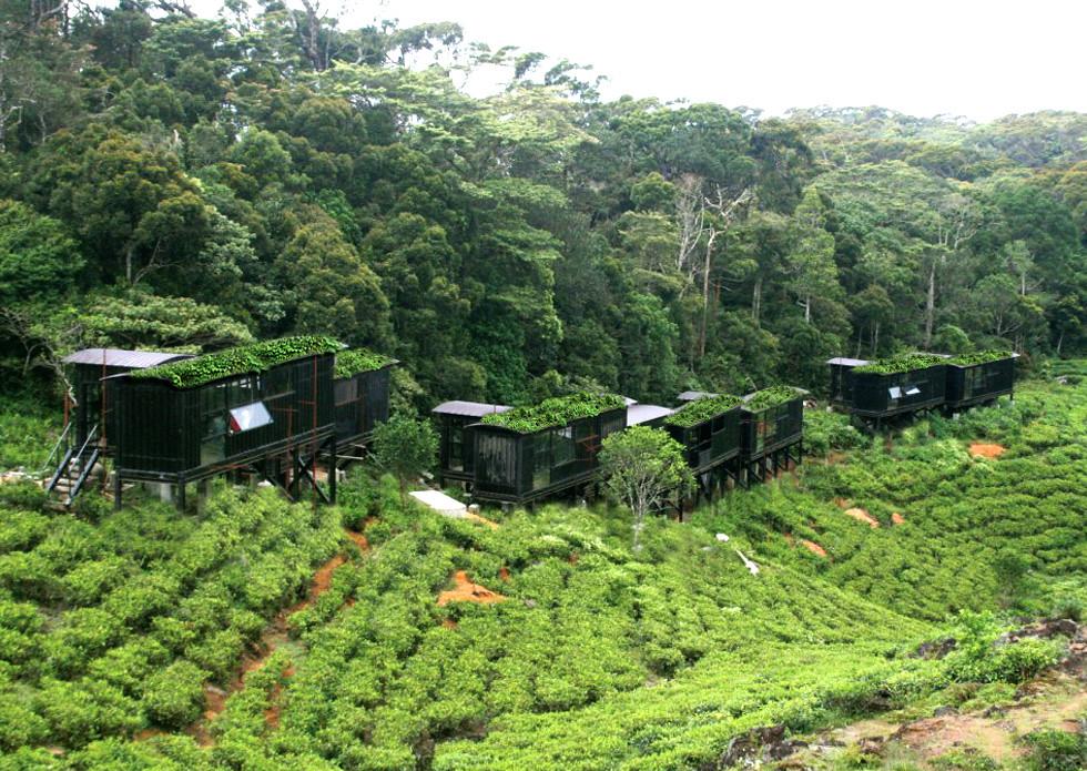 the rain forest eco lodge sinharaja sri lanka sri. Black Bedroom Furniture Sets. Home Design Ideas