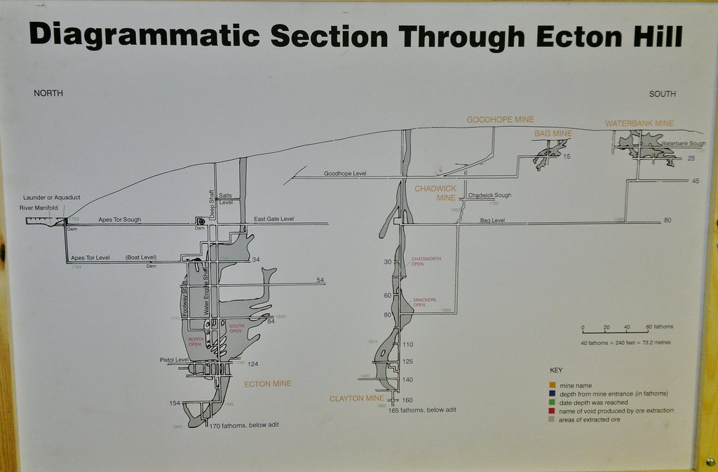 Diagrammatic Section