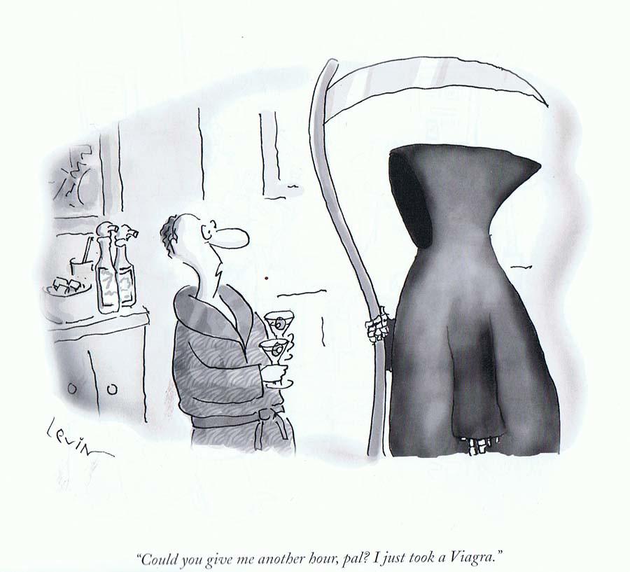 Death by viagra cartoon