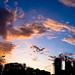 Evening sky over the St Mark´s Church, Belgrade