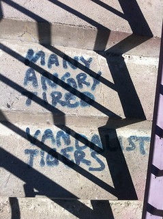 """Many angry tired vandalist tigers"" 