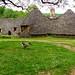 Une oie, un photographe et les cabanes du Breuil ~ A goose, a photographer and Breuil huts
