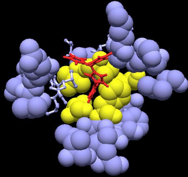 Small molecule drugs software