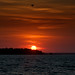 Sunset Over Calibogue Sound Hilton Head May 5 2012 by Jim Crotty