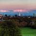 Primrose Skyline