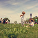 governors_island_25