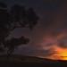 Its full Moon on saturday night ........