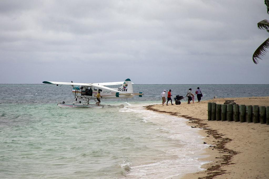 The Island Castaway Comment Trouver  Rondins De Bois
