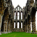 Whitby Abbey, Whitby, North Yorkshire. By Thomas Tolkien