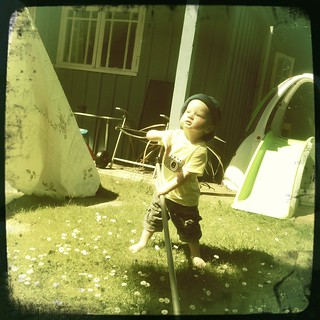 Sweeping up the Daisies - Hipsta edit | by s0ulsurfing