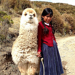 Girl and llama on Isla del Sol, Lake Titicaca, Bolivia