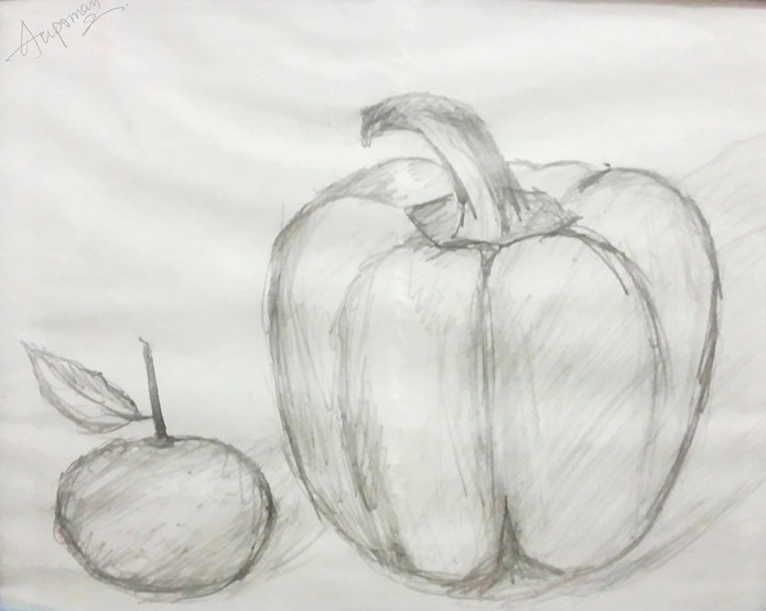 aupoman-fruit-drawing-orange-capsicum | Fruit Pencil ...