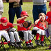 Typical T-ball Bench