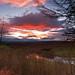 Sunset Across Elleron Lake