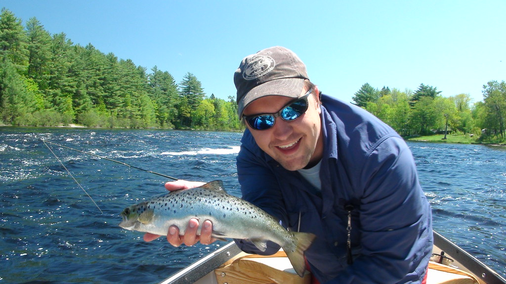 Andrew gets on the board with a fat landlocked salmon flickr for Fishing jobs in maine