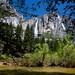Riverbank View - Yosemite Falls