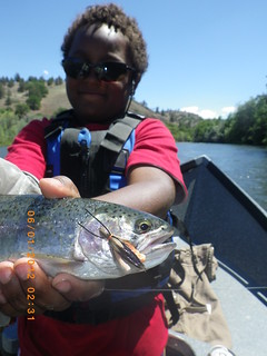 Salmonfly dry fly and Klamath River steelie