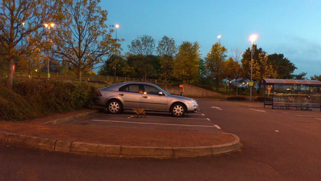 Sainsbury S  Dog Kennel Hill London Se Bb Car Parking