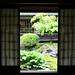 View through screens of the garden