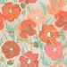 101florals_poppy_LindsayNohl_web1