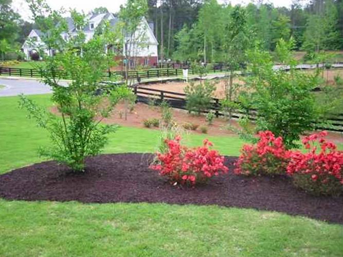 front yard berm landscaping a landscape solutions flickr