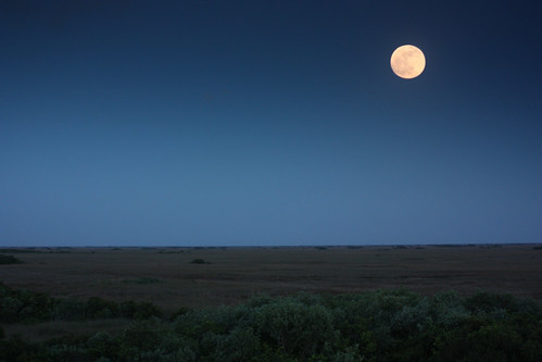 Everglades - Moonrise | by cedarkayak