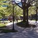 Franklin Park 2012-03-27