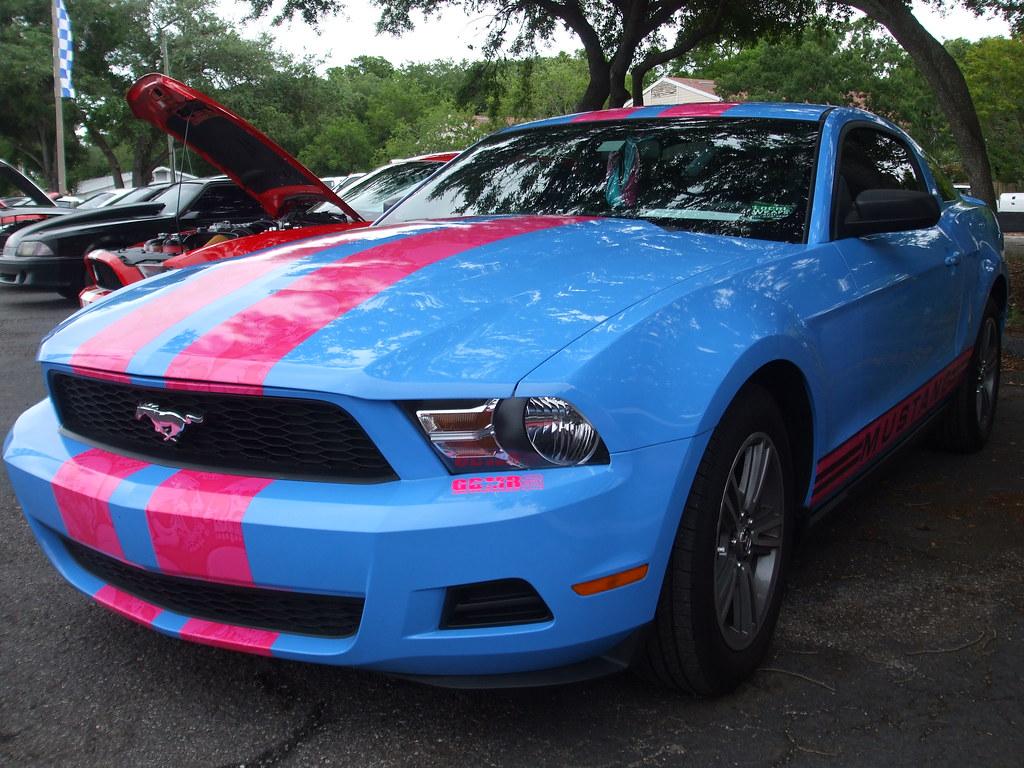 Blue Mustang Registry Blue Mustang Registry