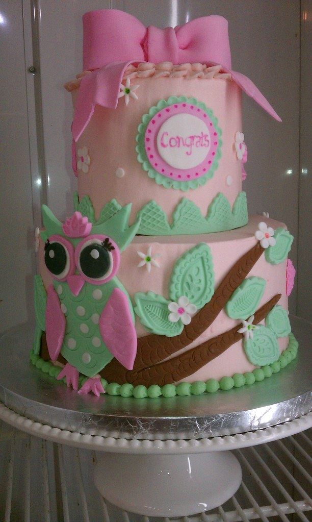 owl baby shower cake beverly flickr