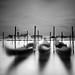 Essence Of Venice..