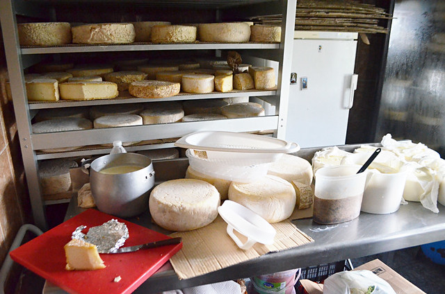 Queseria, Cheesemaker, Fontanales, Gran Canaria