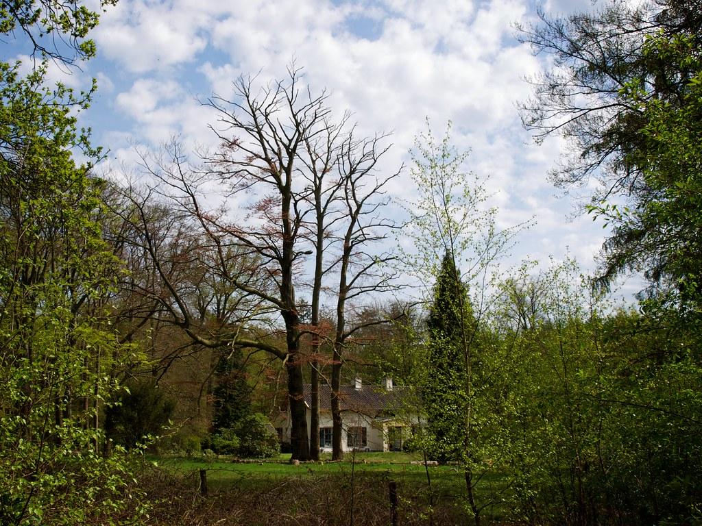 Verborgen huis tussen de bomen house hidden behind the tre flickr - Tussen huis ...