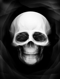 Faceted Skull | by The Real Paul Johns