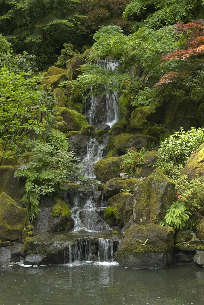 Japanese garden portland usa trip day 08 merlijn hoek - Portland japanese garden free day ...