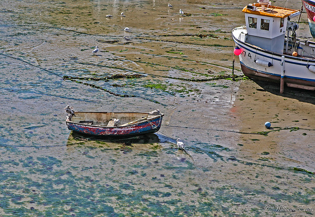 A well used small boat low tide bow of inshore fishing for Inshore fishing boats