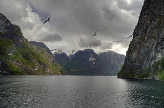 Aurlandsfjord | by d2francis2