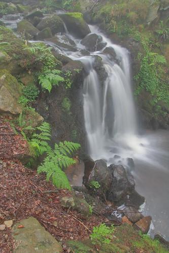 Parque natural de #Gorbeia #Orozko #DePaseoConLarri #Flickr -065