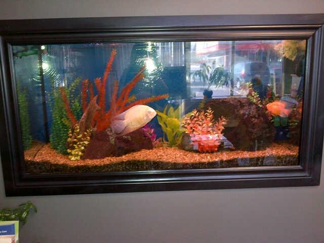 Fishtank2 500 for 90 gallon fish tank for sale for 90 gallon fish tank for sale
