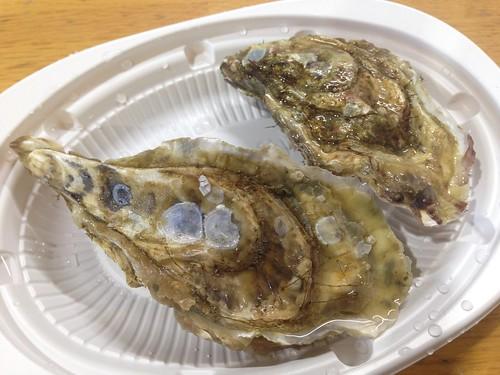 hokkaido-akkeshi-a-uroko-oyster-maruemon01