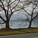 雪の残る湖北路