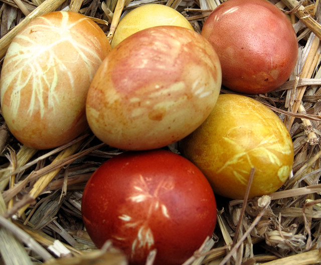 Natural Dyes Onion Skins