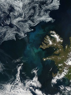 Phytoplankton bloom off Iceland | by NASA Goddard Photo and Video