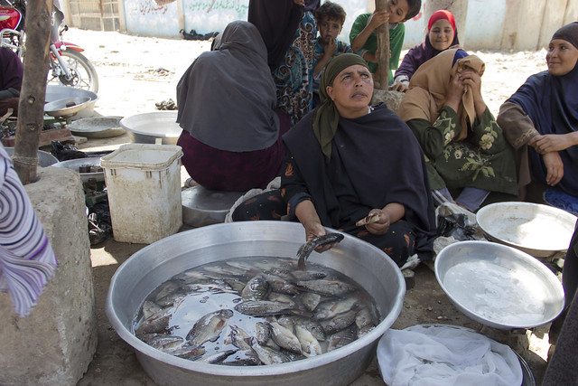 Women fish sellers in Fayoum, Egypt