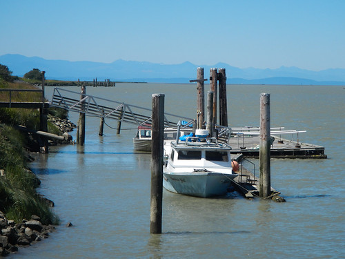 Fishing Boats Docked on the Fraser River | by DJ Greer