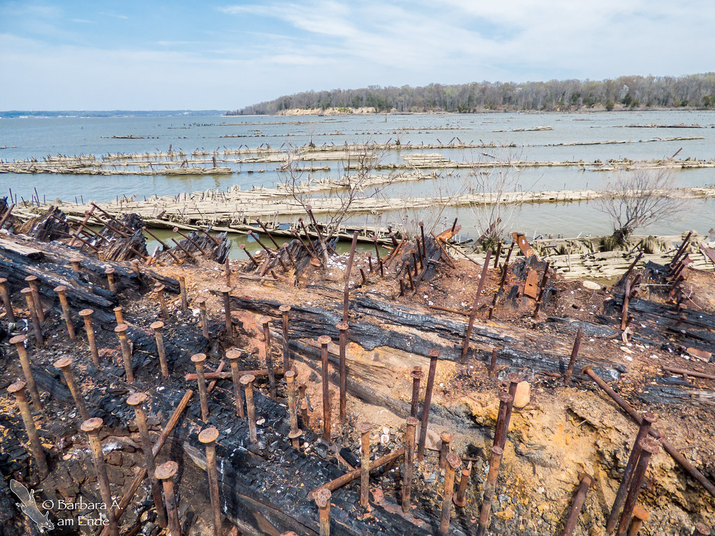 Ghost Ships in Mallows Bay | Best seen at low tide. Click th ...